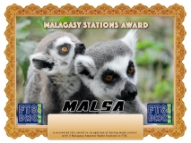 MALSA Award Manager A92AA In recognition of international two-way FT8 amateur radio communication, the FT8 Digital Mode Club (FT8DMC) issues Malagasy-Stations-Award certificates to amateur radio stations and SWL of the world. Qualification for the FT8 MALSA award is based on an examination by the FT8 MALSA Award Manager. The applicant has to prove that he has made contact with at least 3 different amateur radio stations from Madagascar.